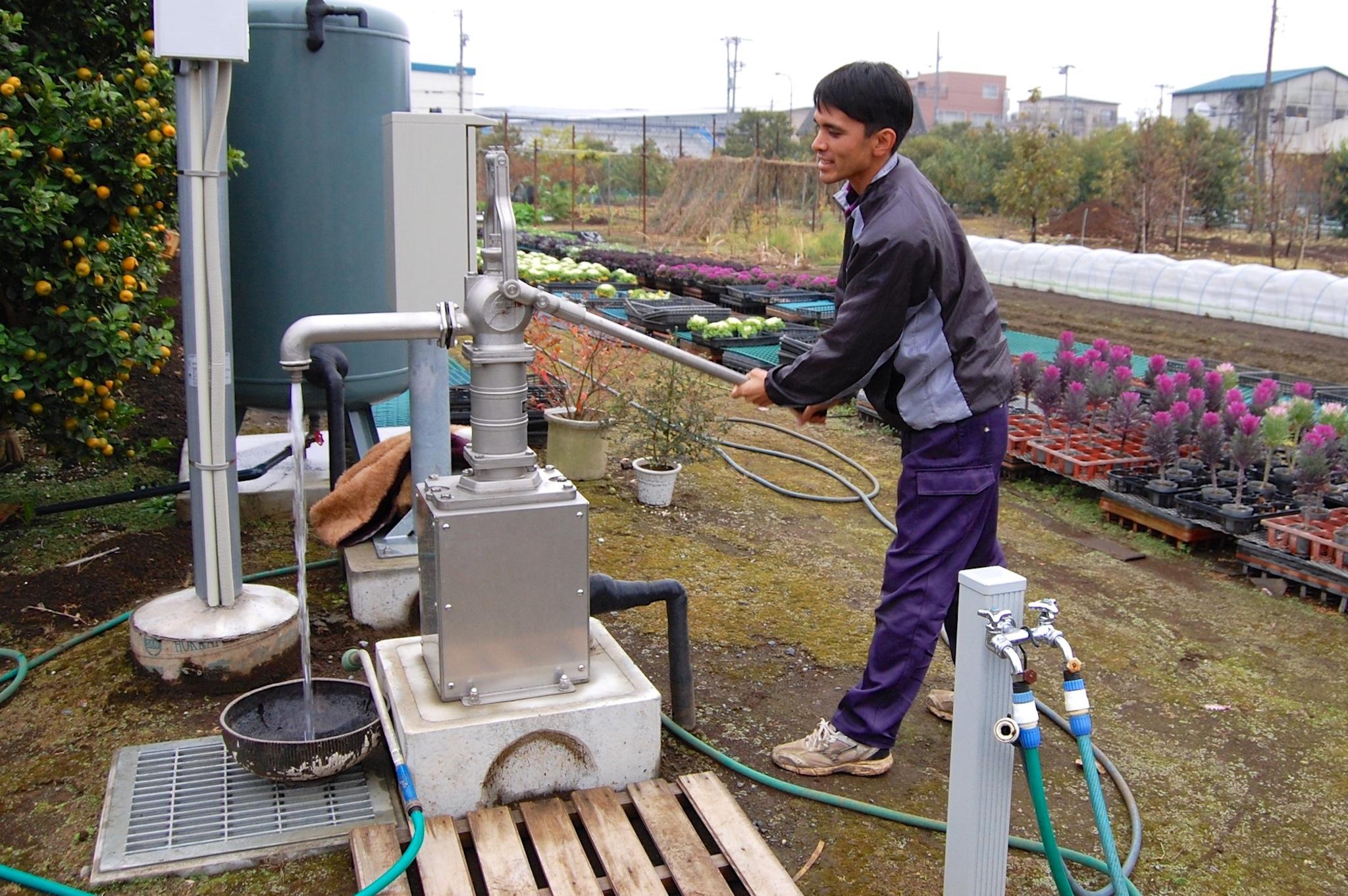 新設の井戸。花の水やりだけでなく、災害時には地域への開放も想定