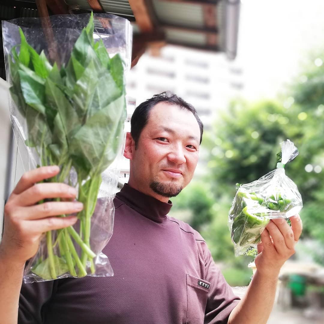 三鷹市新川の根岸隆好さんの空芯菜、ピーマン