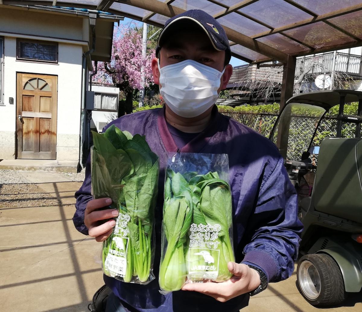 三鷹市北野のほうれん草、青梗菜